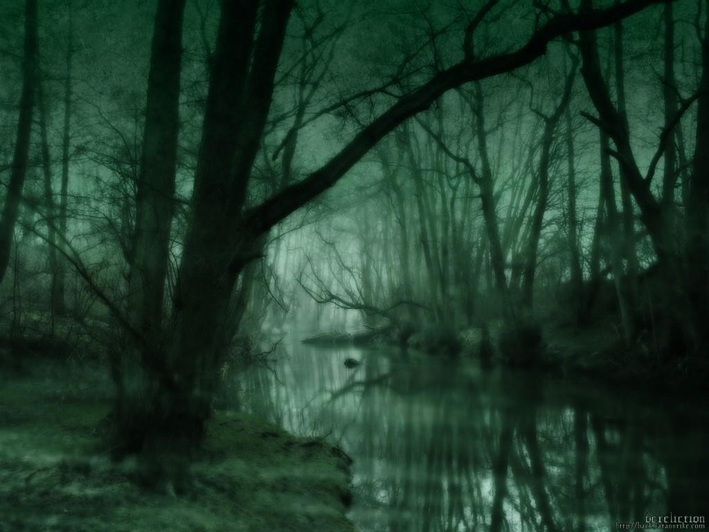 Обои, Зеленое болото, Зелень, Лес, Болото, Зеленое, 1600x1200, картинки.